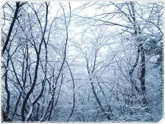 2018年の冬休みが気になる!社会人の年末年始の休暇はいつから開始?