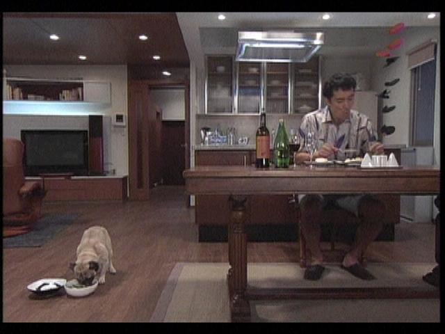 【結婚できない男】初代パグ犬・ケンの現在!まだ現役で活躍している?